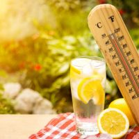 Beat The Summer Heat: Safety Tips For Seniors