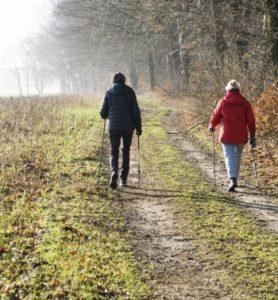 Senior Citizens Walking