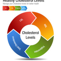 Understanding Your Cholesterol Levels